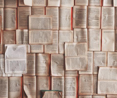 英語の長文を爆速で読めるようになれた方法 【 京大生実践済の速読法 】